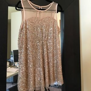 Sequin & Sheer Top NWT Gorgeous Rose Gold / Blush